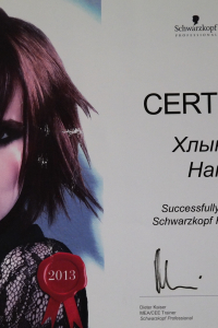 Профессиональный семинар Schwarzkopf 2013
